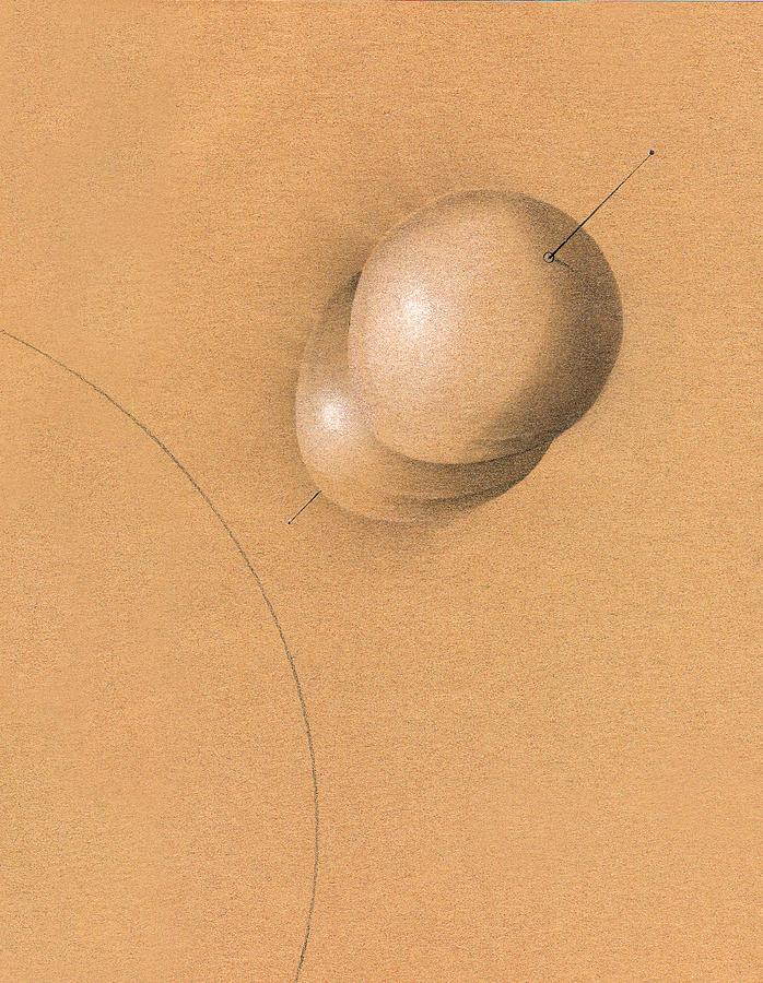 Albert Notarbartolo Drawing - Earth Log I by Albert Notarbartolo