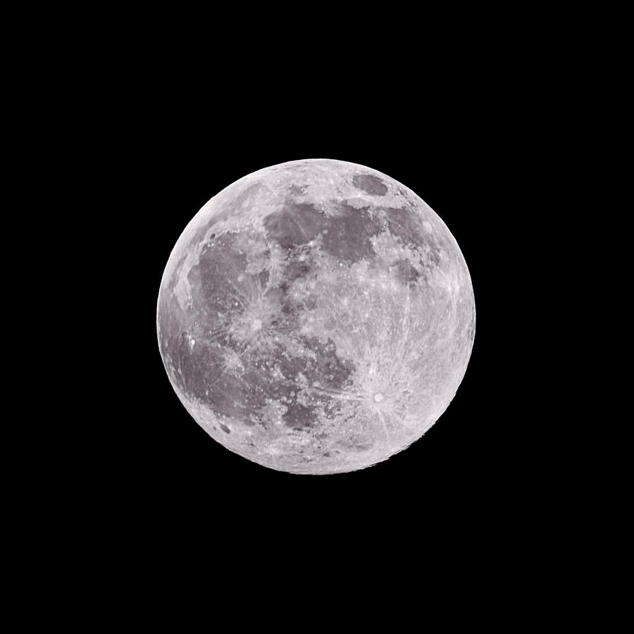 Earths Moon Photograph