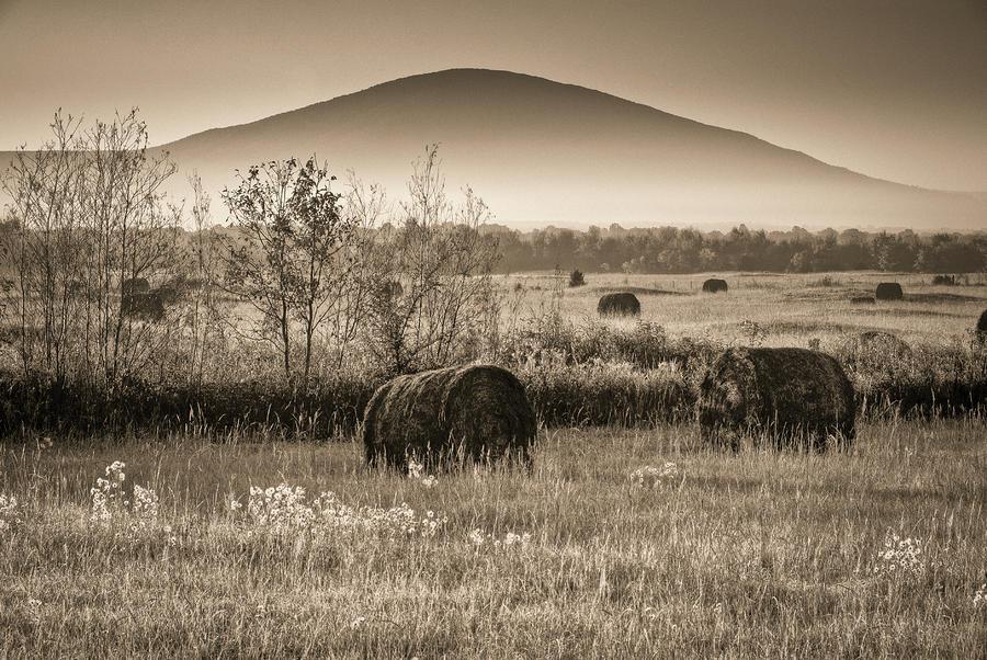 Eastern Oklahoma Autumn Dawn by Terry Olsen