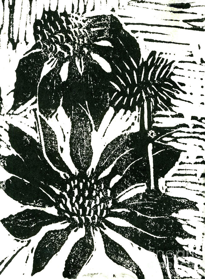Echinacea Block Print Mixed Media  - Echinacea Block Print Fine Art Print