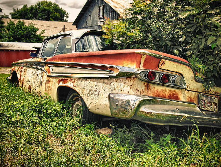 Edsel In The Weeds Photograph