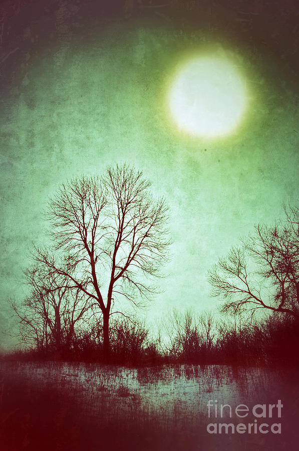 Rural Photograph - Eerie Landscape by Jill Battaglia
