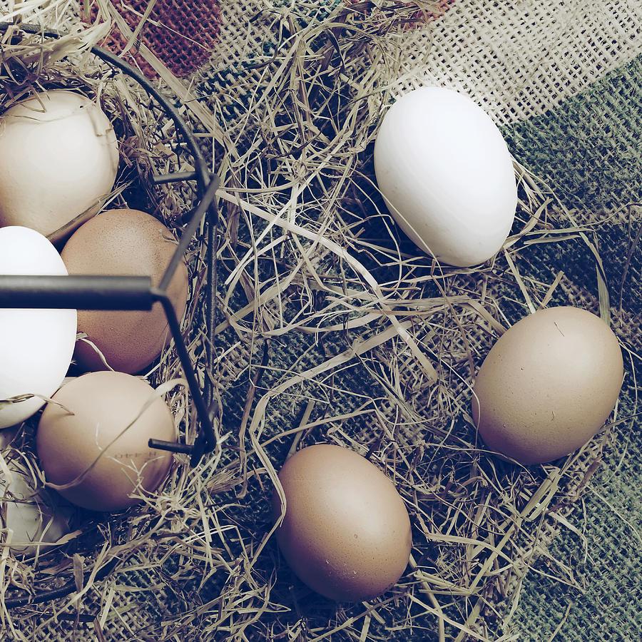 Eggs Photograph