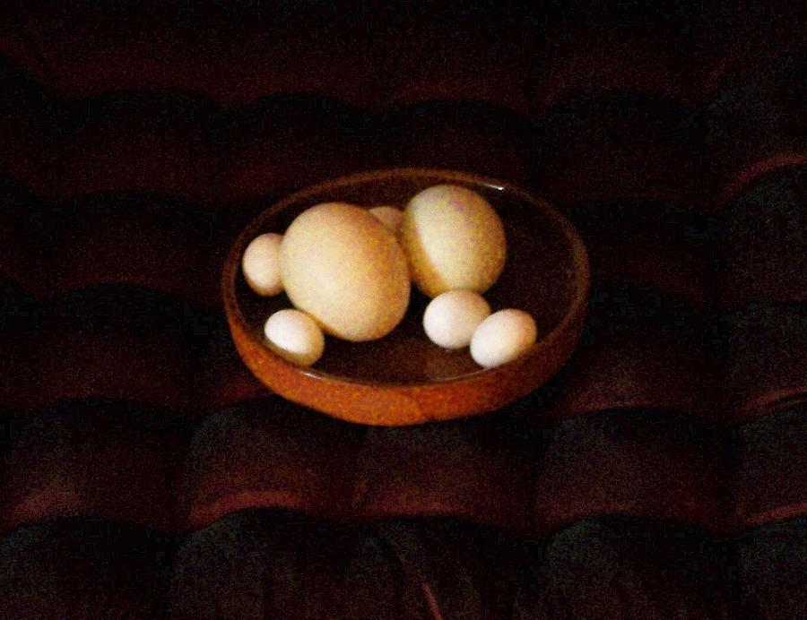 Eggs Mixed Media