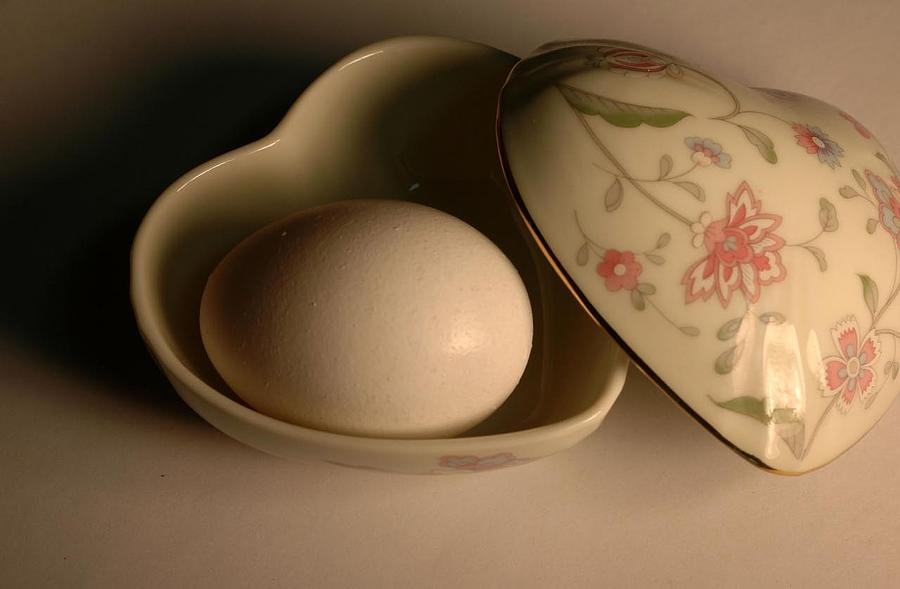 Eggs Six Photograph