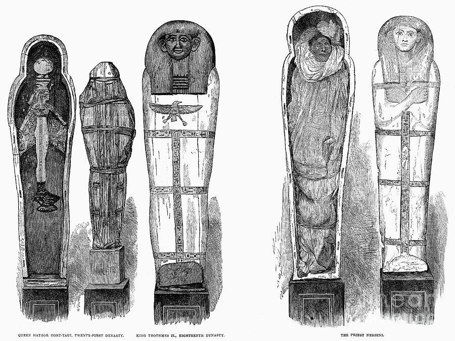 Egypt: Royal Mummies, 1882 Photograph