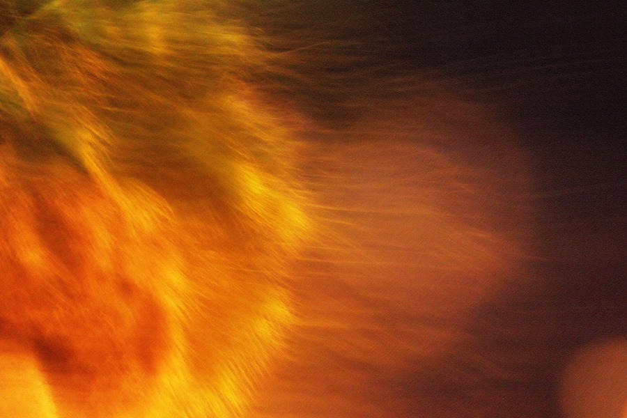 Egypts Flame Photograph  - Egypts Flame Fine Art Print