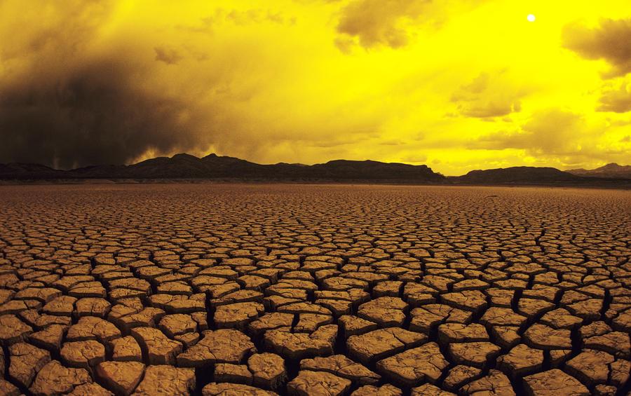 El Mirage Desert Photograph