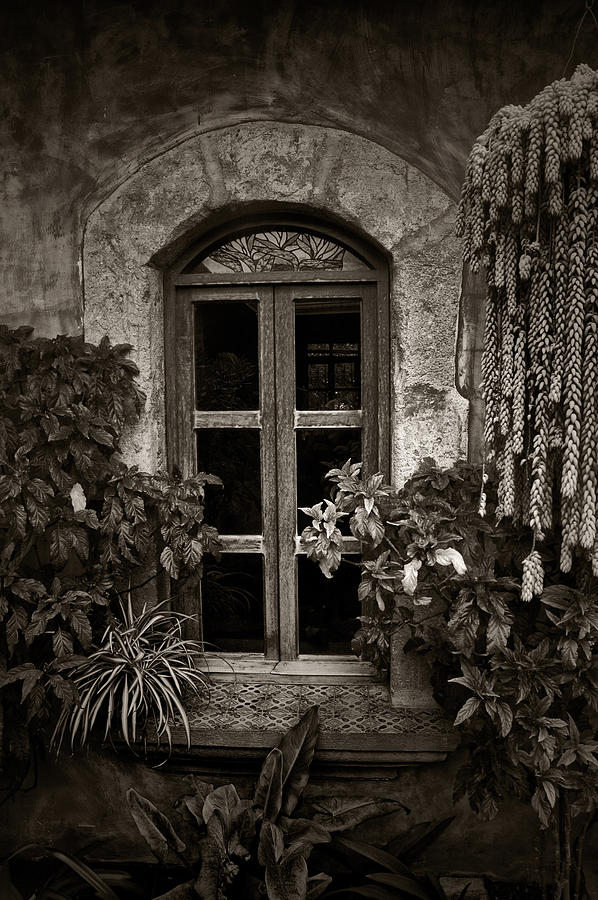 El Sitio Window Photograph  - El Sitio Window Fine Art Print