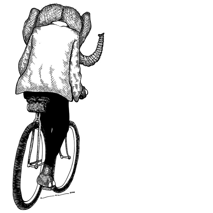 Elephant Bike Rider Drawing  - Elephant Bike Rider Fine Art Print