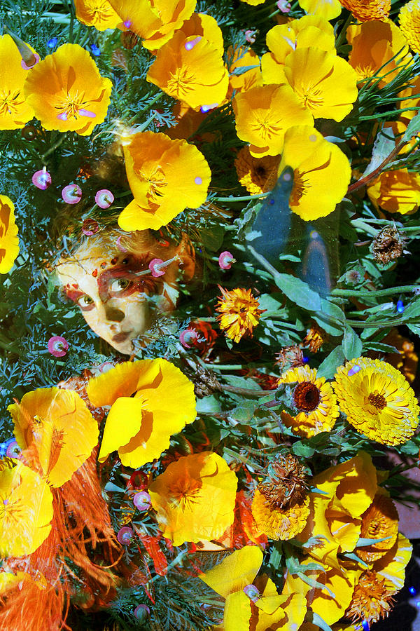 Elfin Child Of Poppies Photograph