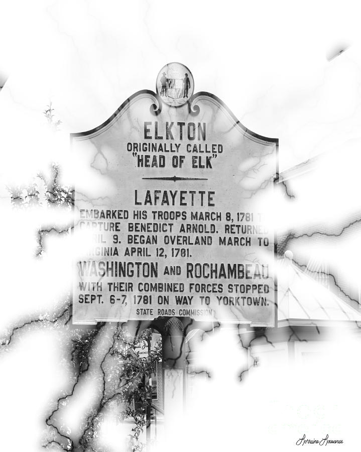 Signs Photograph - Elkton Head Of Elk  by Lorraine Louwerse