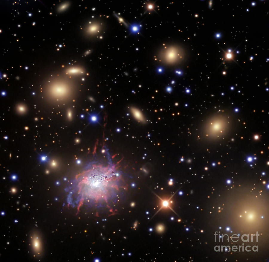 Elliptical Galaxy Ngc 1275 Photograph