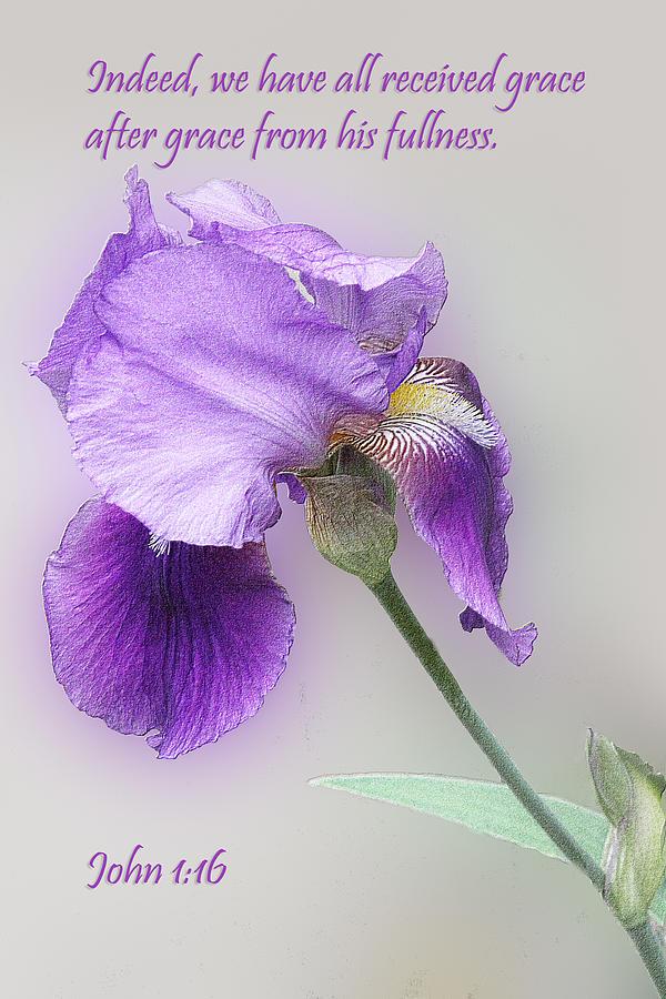 Embossed Iris John 1v16 Photograph