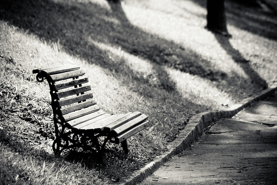 Empty Park Bench On Edge Photograph  - Empty Park Bench On Edge Fine Art Print