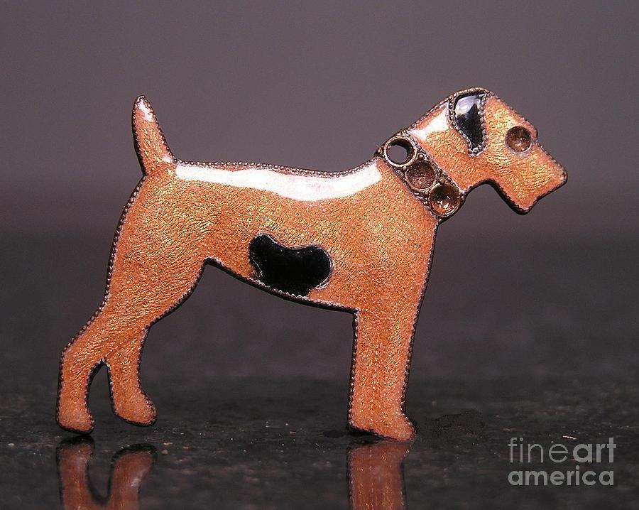 Dogs Jewelry - Enamels 48f by Dwight Goss