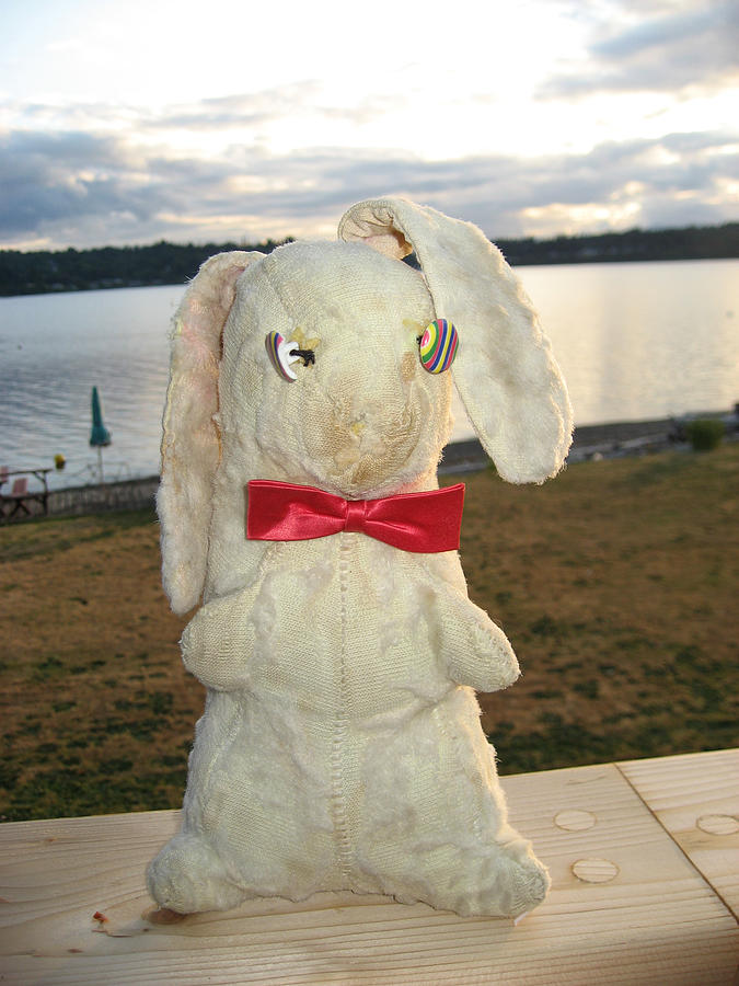 Old Stuffed Bunny Photograph - Energizer Bunny No More by Kym Backland