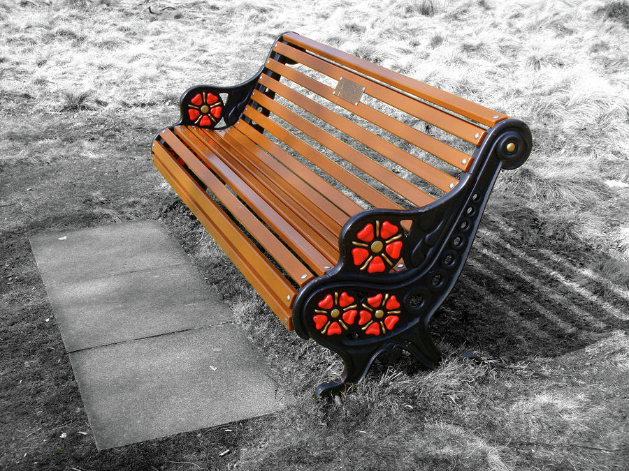 English Bench Photograph by Roberto Alamino