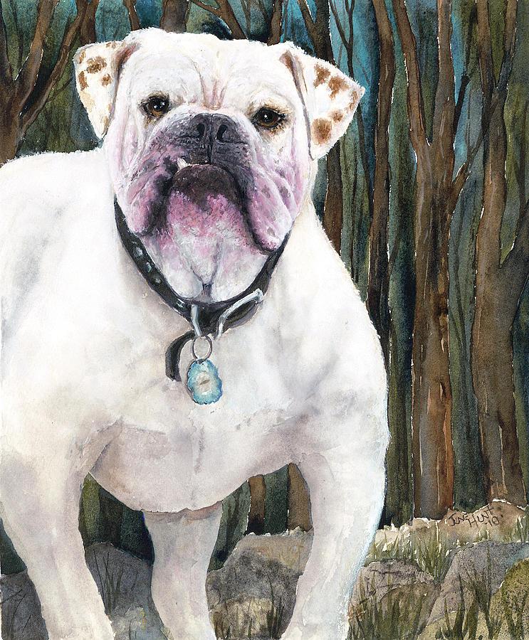 English Bulldog by June Hunt