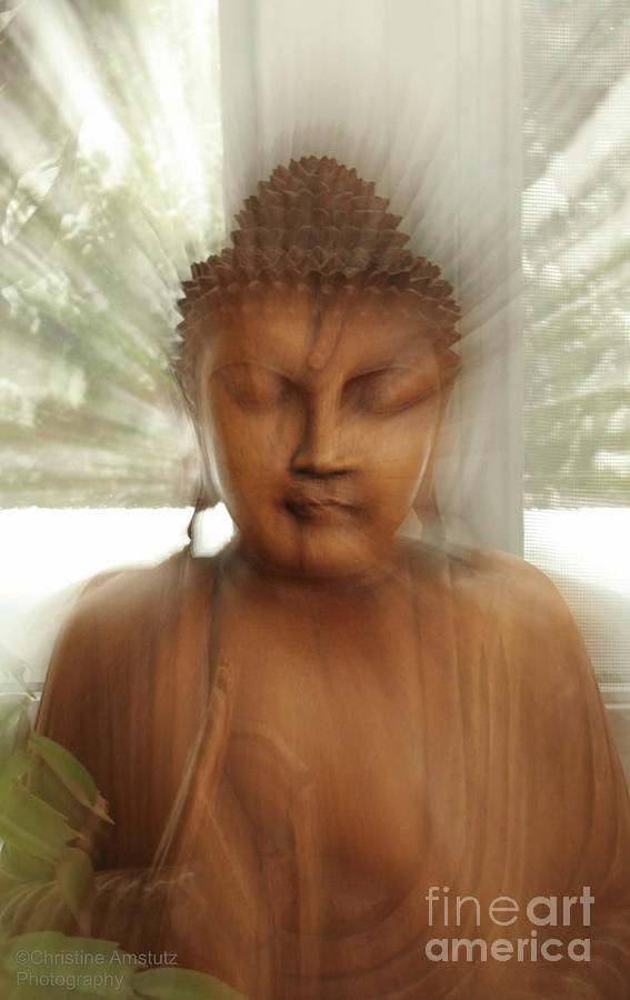 - enlightened-buddha-christine-amstutz
