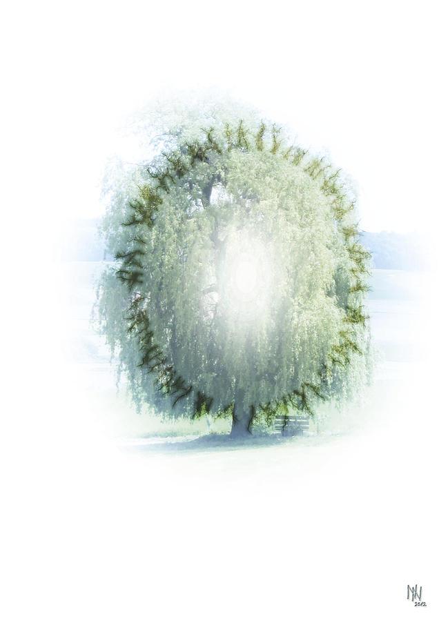 Enlightment Of The Willow Digital Art