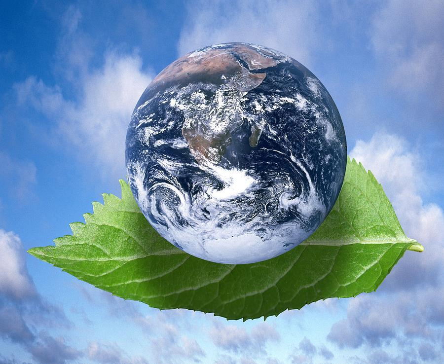environment issues Environmental issues are addressed at a regional, national or international level by government organizations the largest international agency, set up in 1972, is the united nations.