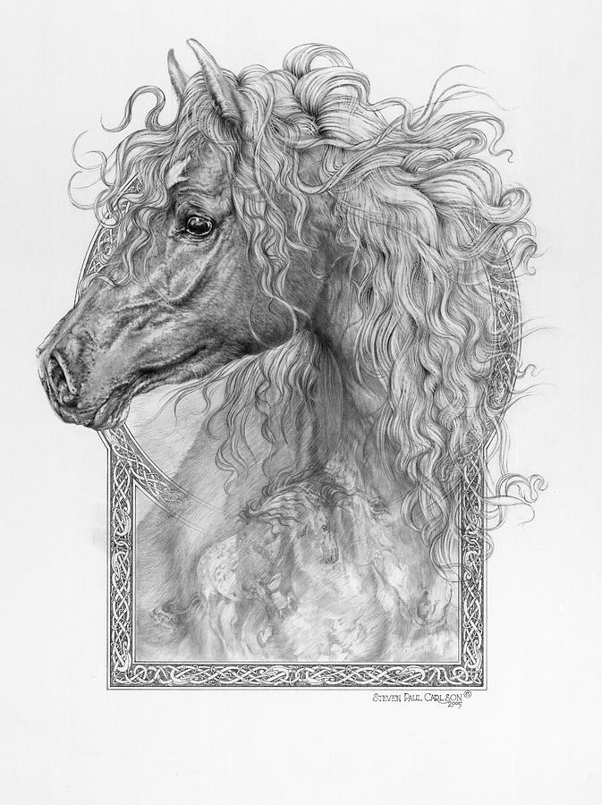 Equus Caballus - Horse - The Divine Gift Drawing
