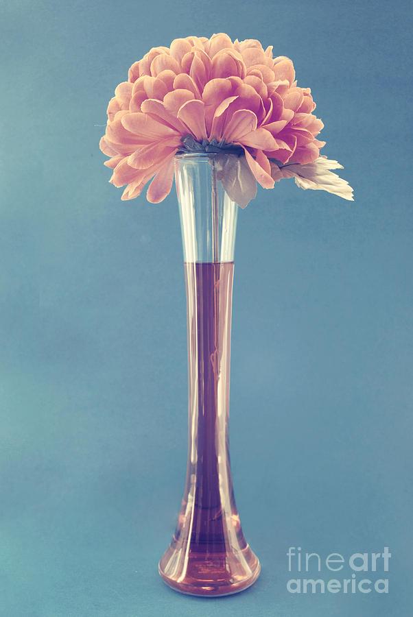 still Life Photograph - Estillo Vase - S01v3f by Variance Collections
