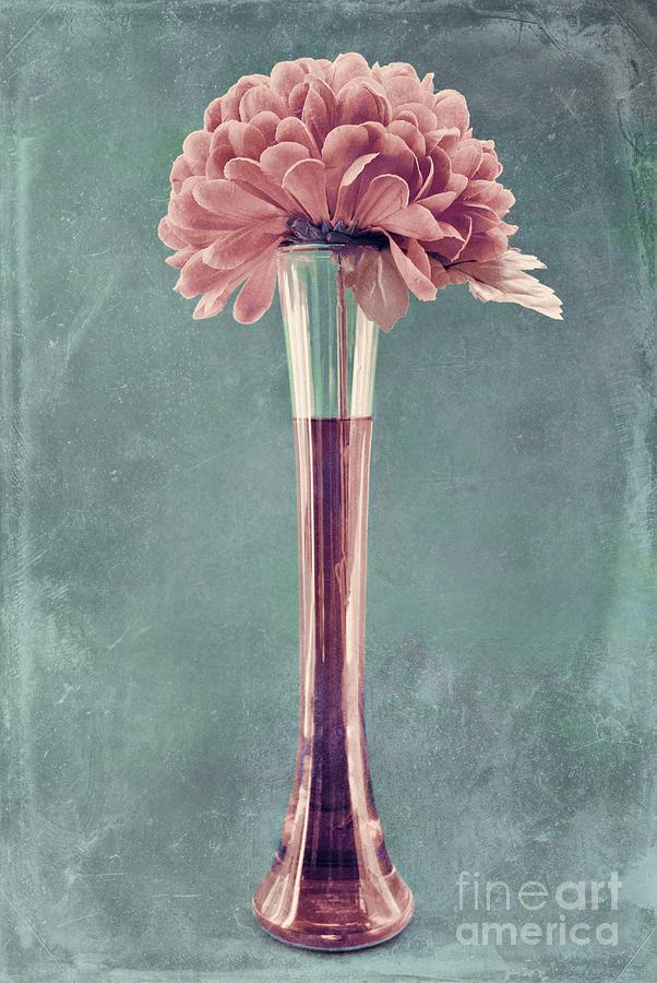 still Life Photograph - Estillo Vase - S01v4b2t03 by Variance Collections