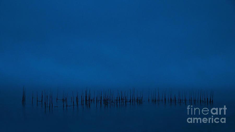 Evening Blues.. Photograph