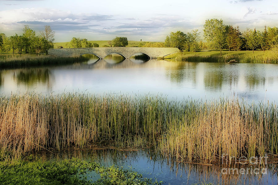 Evening Calm Photograph  - Evening Calm Fine Art Print