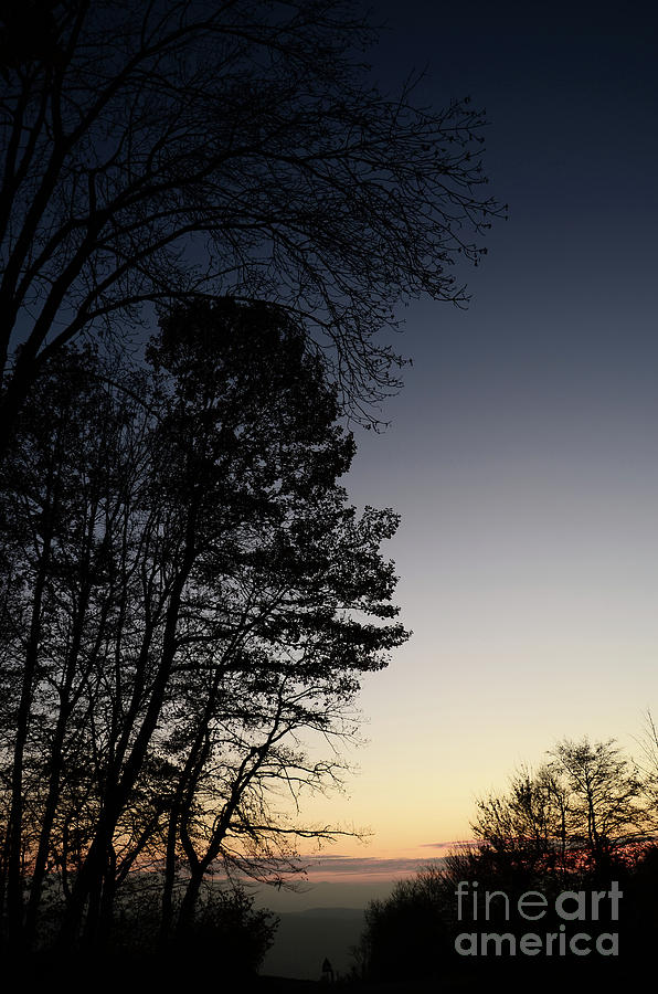 Evening Silhouette At Sunset Photograph  - Evening Silhouette At Sunset Fine Art Print