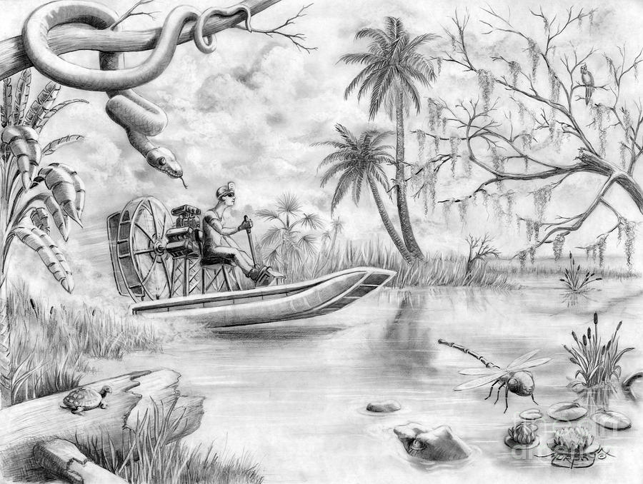 how to draw the everglades