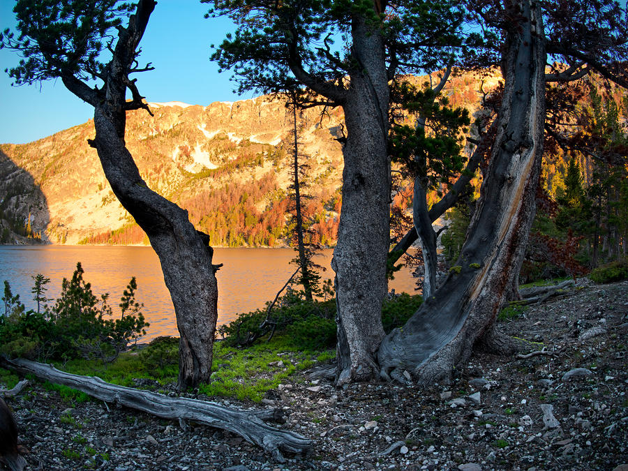 Everson Lake 2 Photograph  - Everson Lake 2 Fine Art Print