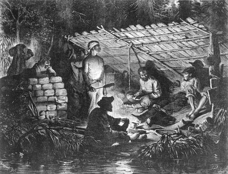 History Photograph - Ex-slaves Hiding In The Swamps by Everett