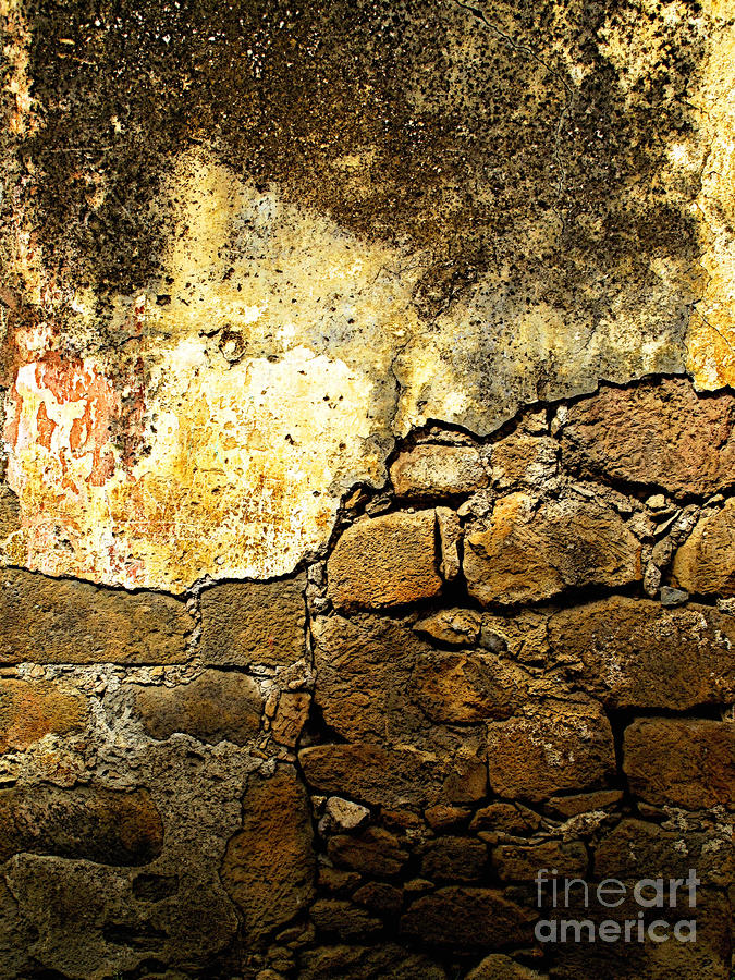 Exposed Bricks Photograph  - Exposed Bricks Fine Art Print