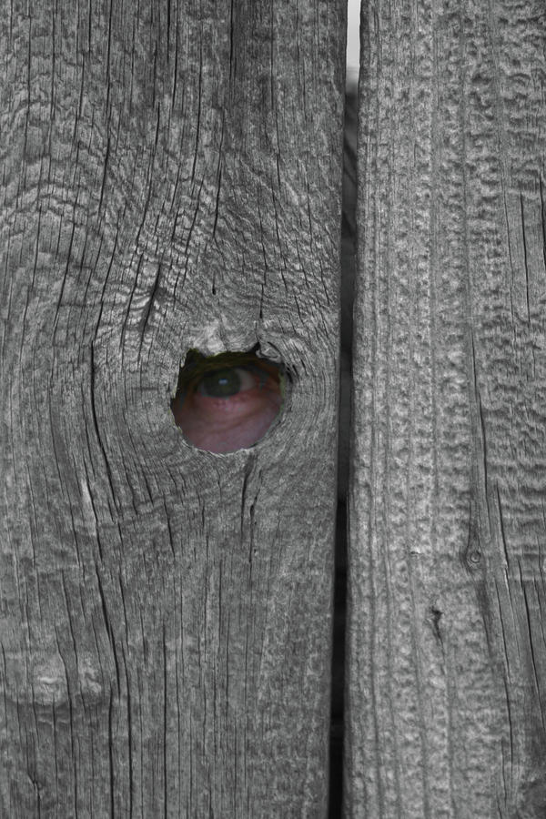 Eye On Life Photograph  - Eye On Life Fine Art Print