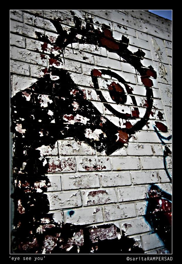 Eye See You Photograph