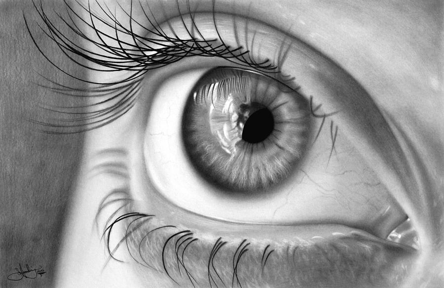 Eye Study Drawing Drawing by John Harding