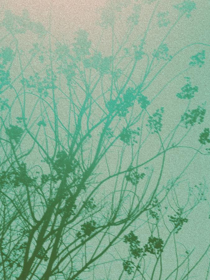 Tree Photograph - Fading Light by Bethany Fulford