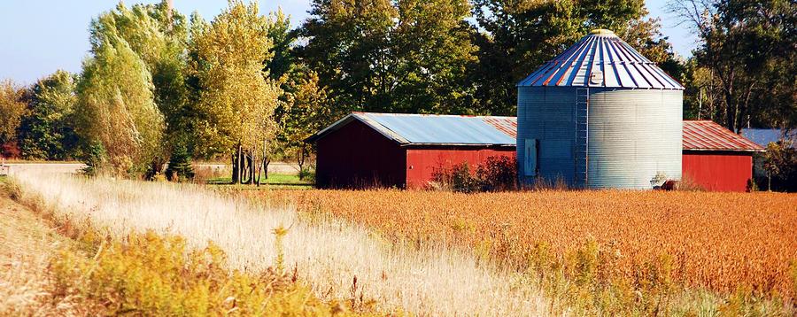 Fall Bin Photograph
