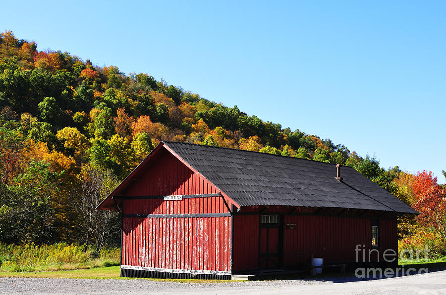 Fall Color Pickens West Virginia Photograph