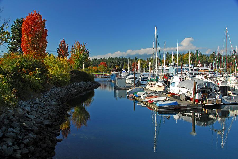 Fall Colors At English Bay Photograph