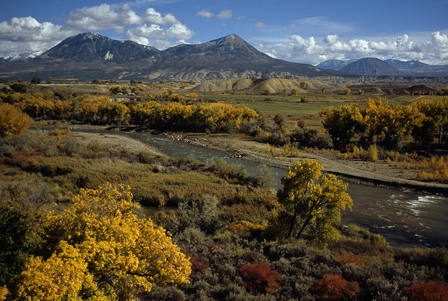 Fall Colors Near Durango, Colorado Photograph