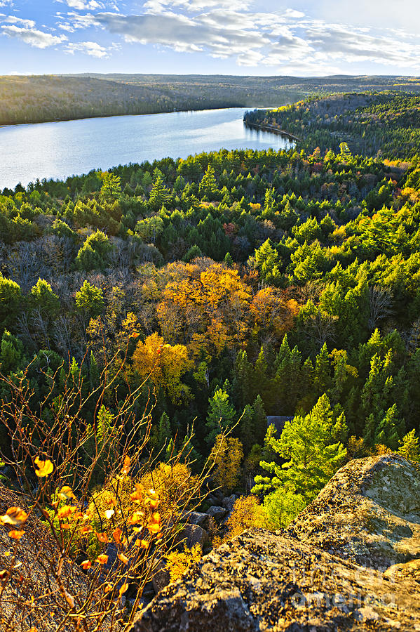 Fall Forest And Lake Top View Photograph  - Fall Forest And Lake Top View Fine Art Print