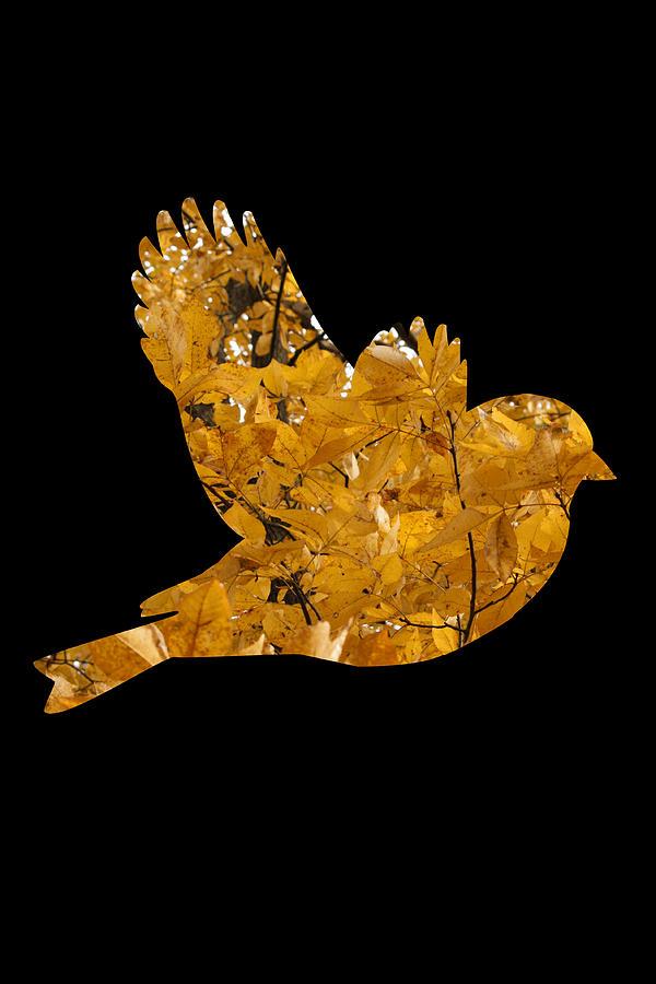 Fall  Bird Leaf Tree Photograph - Fall Peace by Julian Bralley