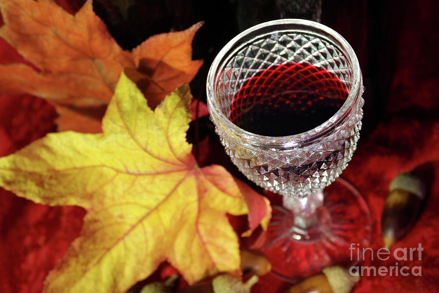 Fall Red Wine Photograph  - Fall Red Wine Fine Art Print