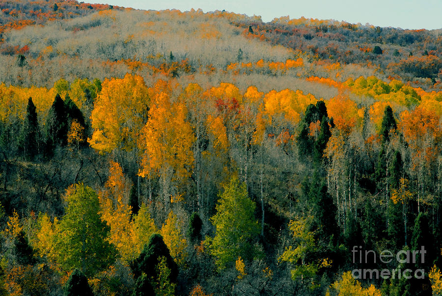 Fall Ridge Painting  - Fall Ridge Fine Art Print
