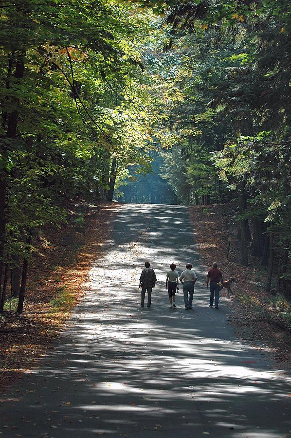 Fall Walk Photograph by RJ Martens