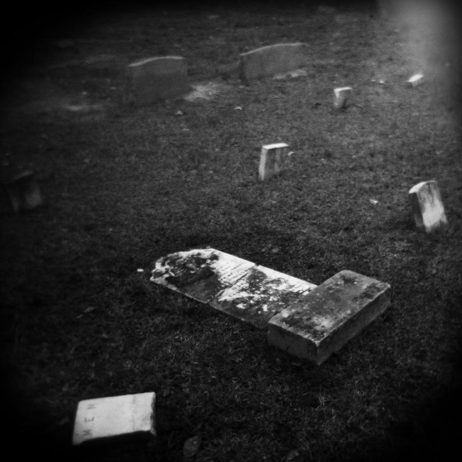 Fallen Photograph